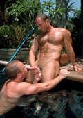 Cock Sucking Gay Bears poolside