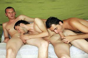 Yummy Gay Groupsex