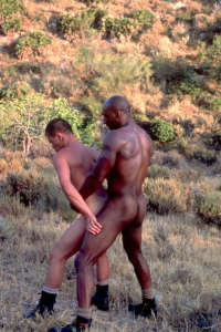 African gay bareback fucking